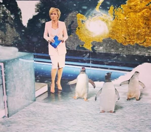 Елена Лихоманова в прогнозе погоды