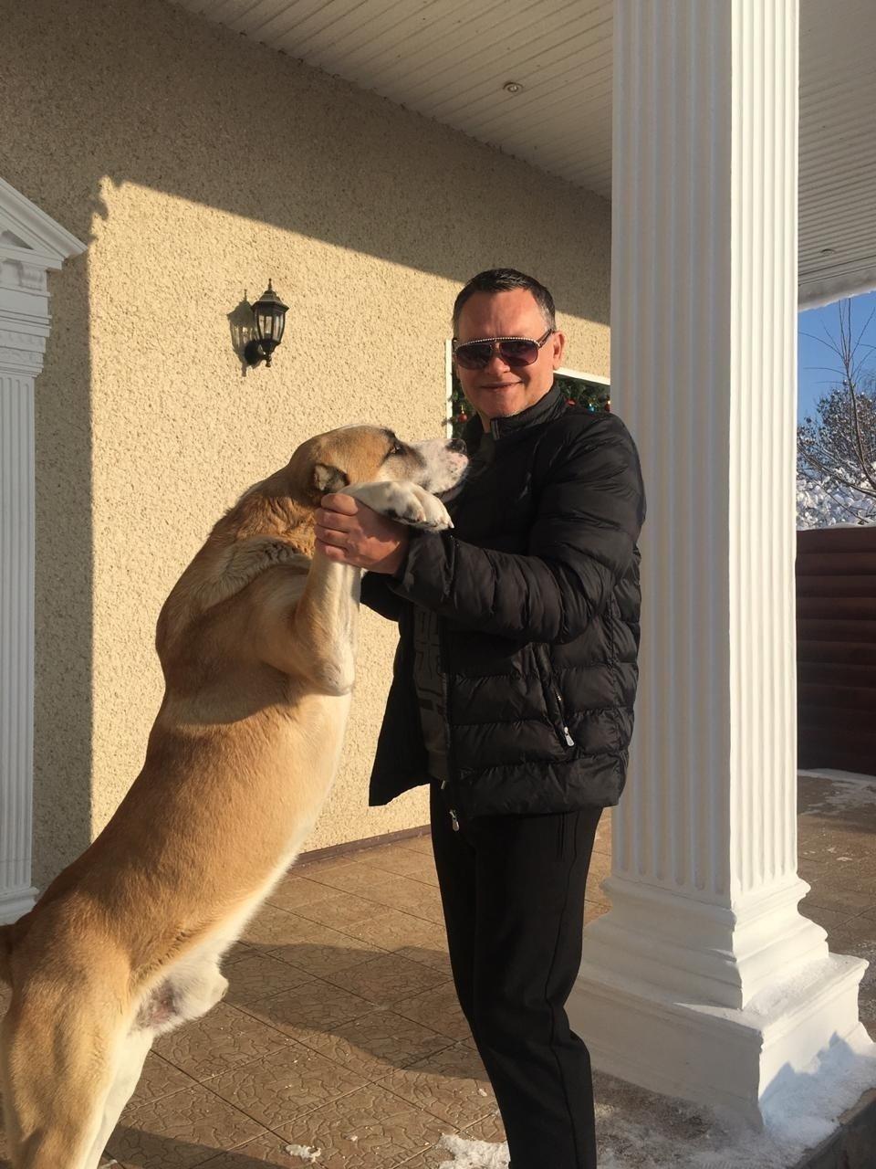Алик Бендерский и его пес